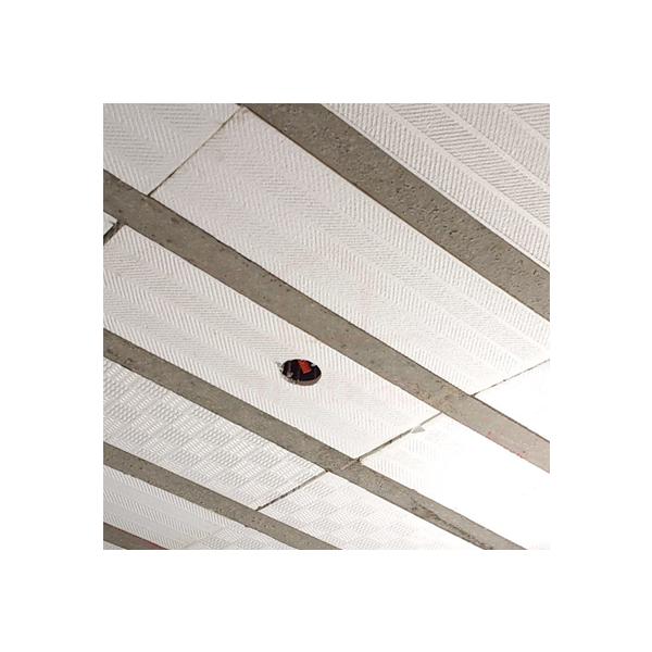 Laje pré-moldada  h16 - Isopor - Ver especificações projeto