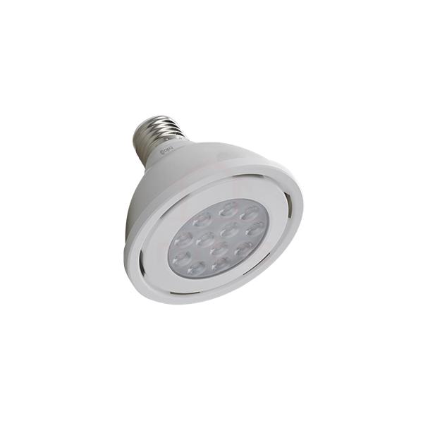 Lâmpada PAR30 de LED