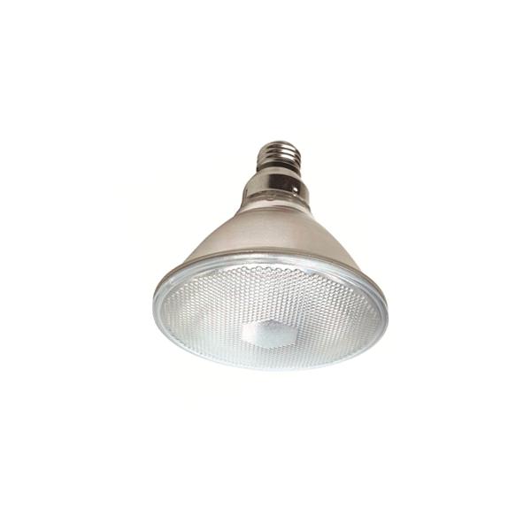 Lâmpada PAR38 de LED